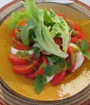 Tomatoes and mozzarella with garlic and pistou