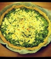Zucchini-ricotta tart