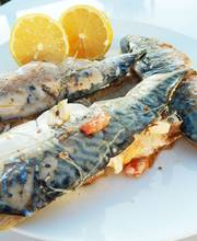 Greek Style Mackerel Filets