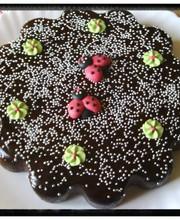 Gâteau fondant au Nutella