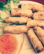 Gourmet Spring rolls