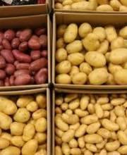 """Pommes """"Coin de rue"""""""