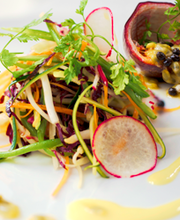 Green Papaya with Garden Vegetable Salad and Papaya Vinaigrette