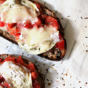 Tomato, goat cheese, and rosemary bruschetta