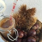 Sweet chestnut purée