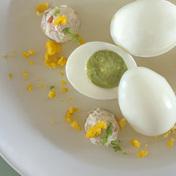 Spring egg, citrus jelly