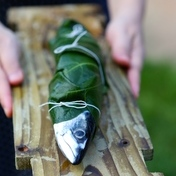 Mackerel barbecued in fig leaves