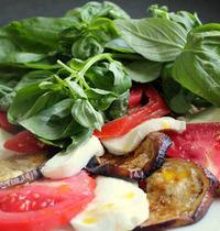 Broiled eggplant with mozzarella, tomato and basil