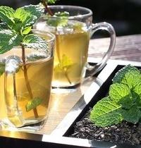 Boisson au thé vert