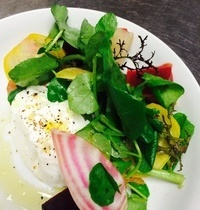 Burrata with roasted and raw beets, and watercress