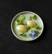 Quail Egg with Cucumber Jelly, Smoked Fera and Oxalis
