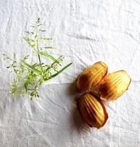 Savory madeleines with goat cheese, honey and walnuts