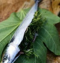 Maquereau aux feuilles de figuier