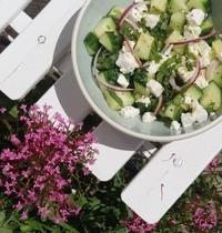 Salade de concombre feta, herbes fraîches