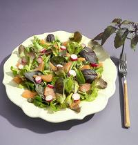 Salade saumon fumé et basilic pourpre