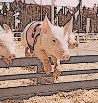 Sauté de Porc à l'Ibérique